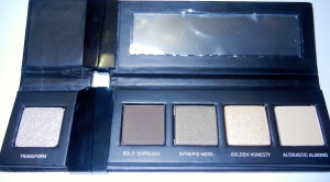 Divergent cosmetics abnegation eye palette